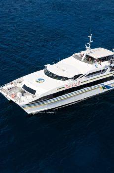 Island Fun Cruise